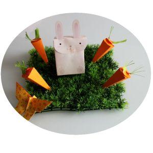 Boîtes lapin et carotte pour pâques
