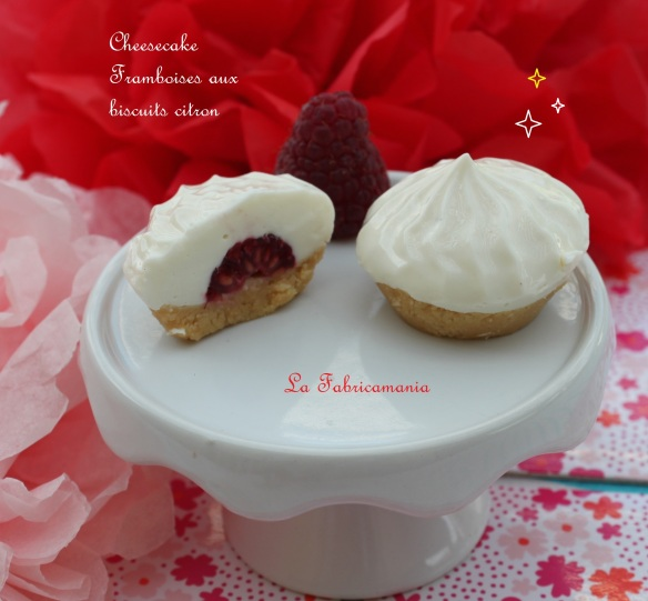 recette-cheesecake-citron-framboise-eat your box- la fabricamania