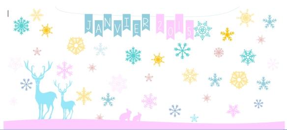 entete-janvier-2015