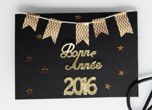Bonne-annee-2016-voeux (24)