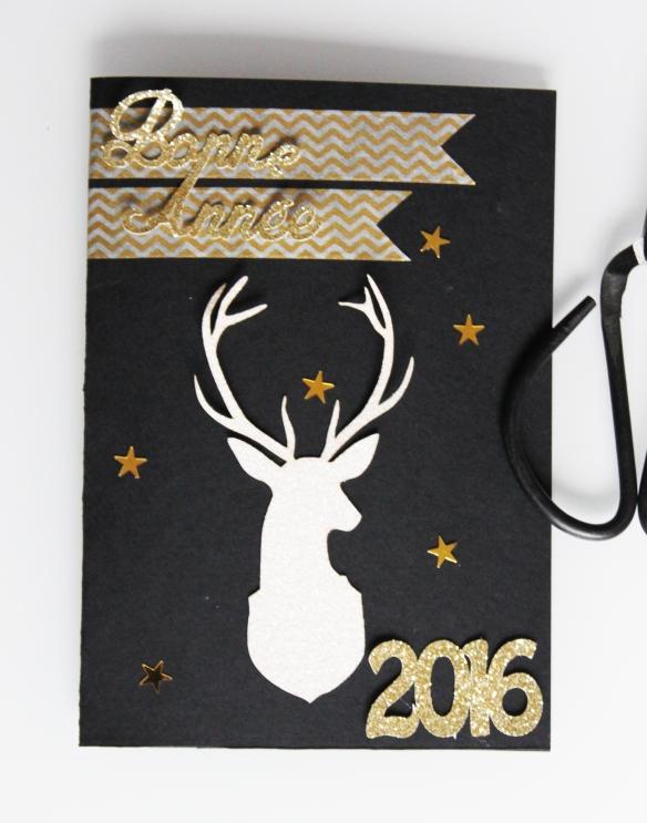 Bonne-annee-2016-voeux (28)